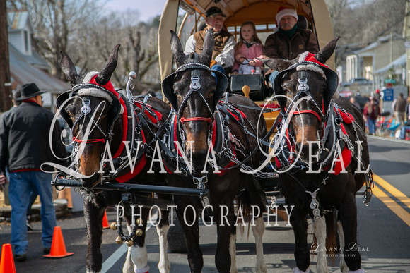 2019 Leiper's Fork Christmas Parade photo of 3 mules and wagon by Lavana Deal Photographer